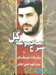معرفی کتاب های منتشرشده در مورد شهید حسین املاکی